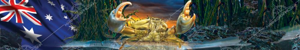 brochure-stock-aussie-crab