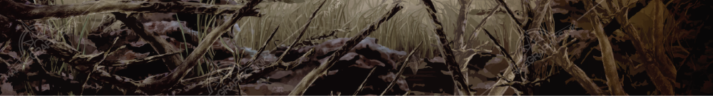 brochure-stock-background-SNAG-NATURAL