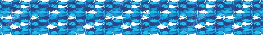 brochure-stock-background-fishcamo--