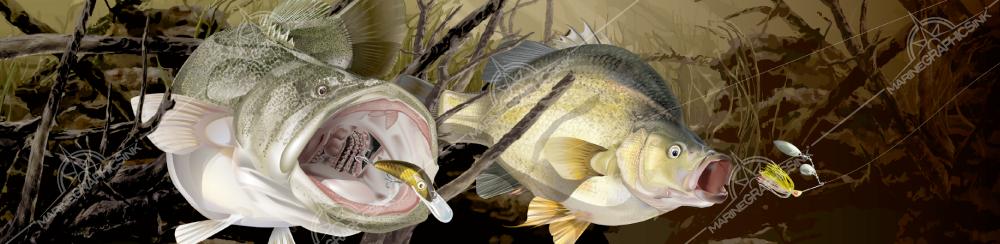 brochure-stock-cod-yellowbelly