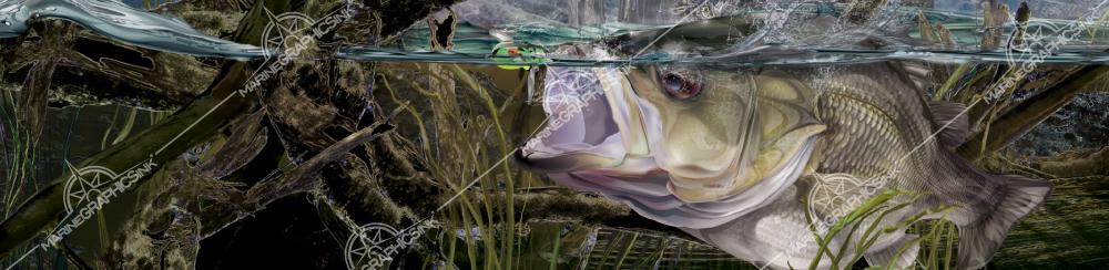 bush-bassn--boat-wrap